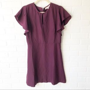 LOFT Plum Dress NWT 6 Retails 69.99